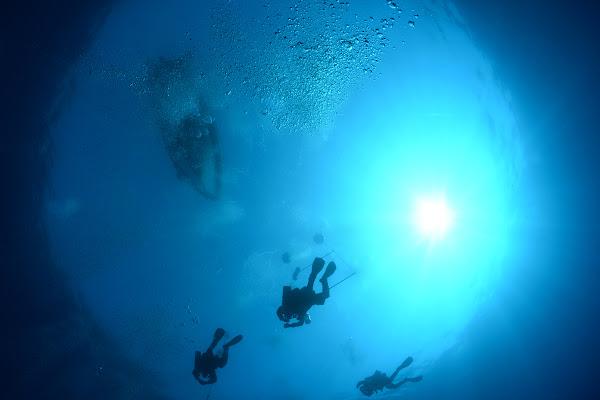 Volando nel blu di stellastyles.com / Stella Del Curto
