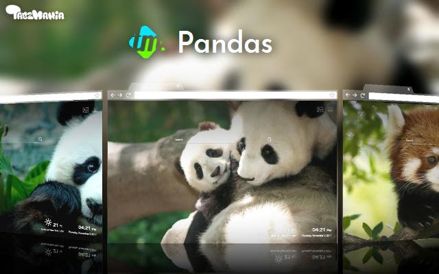 Cute Pandas HD Wallpapers New Tab