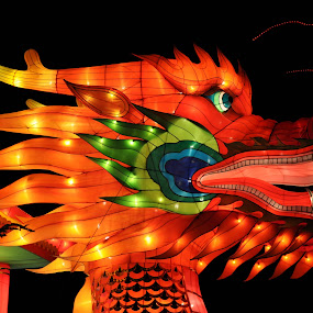 dragon by Jignashu Parikh - Artistic Objects Other Objects ( danger, chinese dragon, dragon, lighted objects, dragon face )