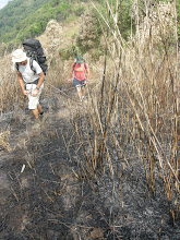 Photo: Slash and burn was happening everywhere - this is at over 1500m and the embers were still warm