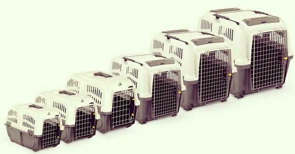 Клетки для собак и кошек в самолете