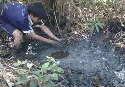 Làm hầm bắt cá vào mùa khô ở rừng U Minh Hạ 3