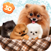 Pomeranian Dog Simulator 3D
