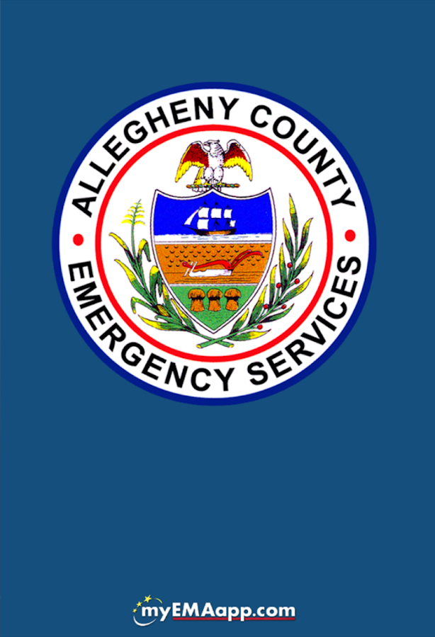 Allegheny County ES- screenshot