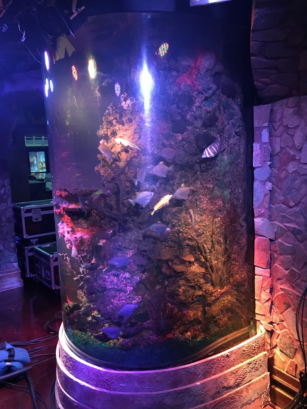 Aquarium Service Sales Fort Worth Dallas TX | Aquarium Headquarters