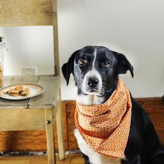 3-Ingredient Dog Biscuits.