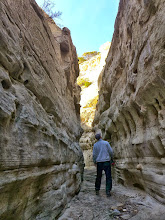 Photo: Box canyon in Neat Coulee