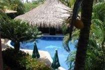 Coral Caribe