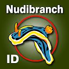 Nudibranch ID Australia NZ icon