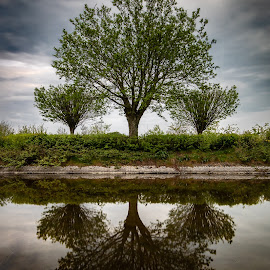 Reflection by Danny Charge - Landscapes Waterscapes ( sky, love, green, waterscape, nature, tree, skies, trees, water, landscape )