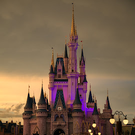 Disney's Magical Castle by Salil Phadnis - Buildings & Architecture Other Exteriors ( princess castle, building, disney world, castle, magical castle )