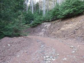 林道分岐に到着(左へ)