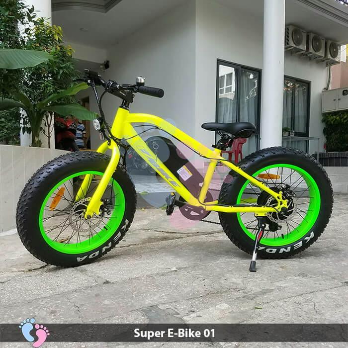 Xe đạp điện địa hình Super E-Bike 01 1