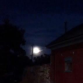 rising by Diana Reed Kubec - City,  Street & Park  Night ( moon, dark, neighborhood, night, city )