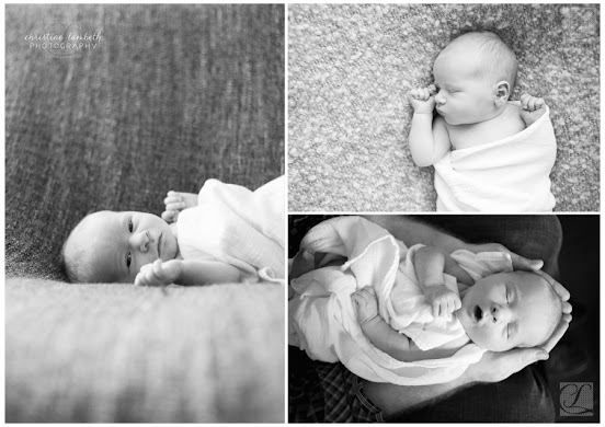 Newborn photos black & white