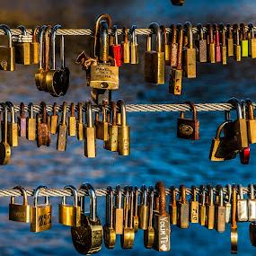Love by Mario Horvat - Artistic Objects Other Objects ( canon, sigma, locks, love locks, ljubljana, bridge, golden hour,  )