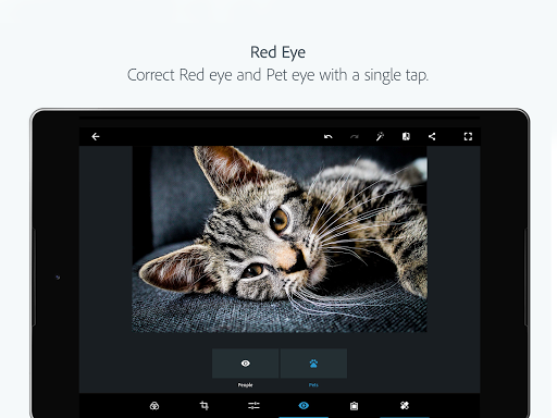Adobe Photoshop Express:Photo Editor Collage Maker  screenshots 16
