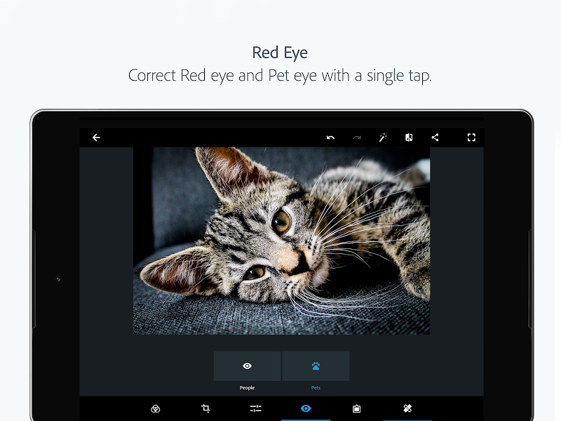 Adobe Photoshop Express:Photo Editor Collage Maker Screenshot 15