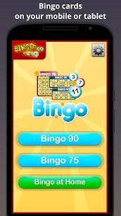Bingo Cards Baixar Última Versão – {Atualizado Em 2021} 1