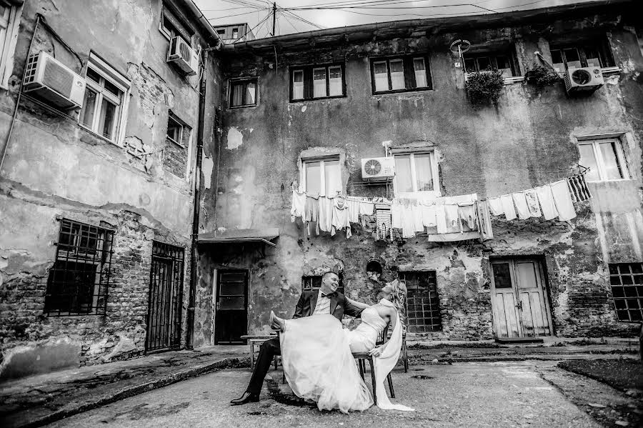 Wedding photographer Milan Lazic (wsphotography). Photo of 24.02.2019