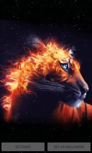 Fiery Tiger King LWP - náhled