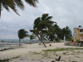 Photo: Caye Caulker