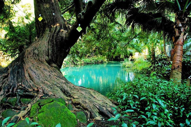 Laguna Blu di RobertoB