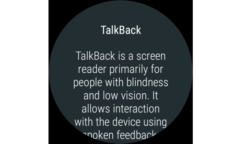 Google TalkBack- screenshot
