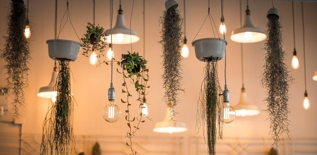 Lichter Ideen