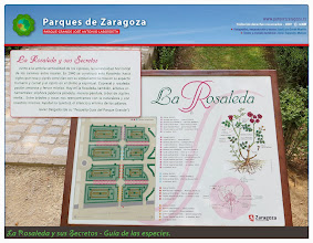 Photo: La Rosaleda