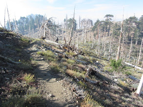 Photo: Heading west on PCT toward the Mt. Hawkins Ridge Junction. The smoke from the Williams Fire is getting worse.