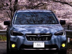 XV GT7のカスタム事例画像 fcl. (エフシーエル)HID・LEDの専門店さんの2020年05月07日14:44の投稿