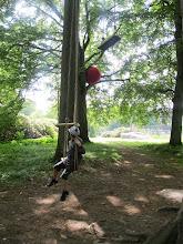 Photo: I baggrunden en stor rød bold i træet. Det er værket 'Double Dribble' af den svenske kunstner Anne Thulin. I alt er tre store bolde placeret i forskellige træer - ognår du kigger op og får øje på værket, blivertrækronernes grønne, passive verden pludselig meget synlig og levende. Der er noget meget åbenlyst legesygt over de røde bolde- som passer godt til det typiske ved parker, hvor børn cykler, klatrer, løber og spiller bold.