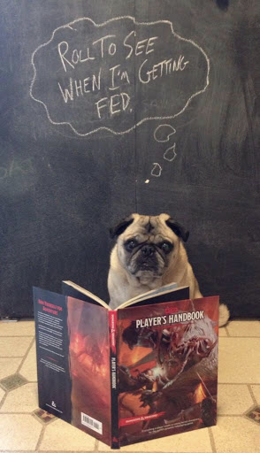 IFAQ: Elves and Pugs
