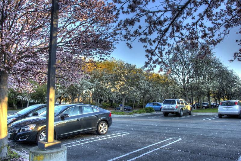 Photo: Parking Lot
