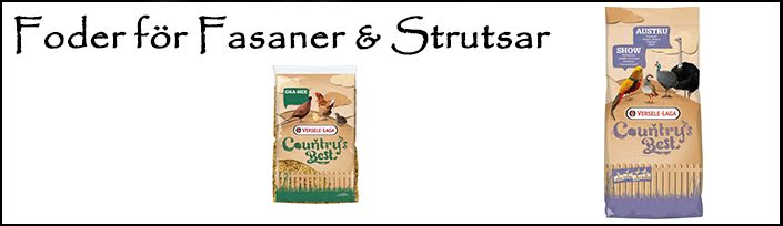 Fasan & Strutsfoder