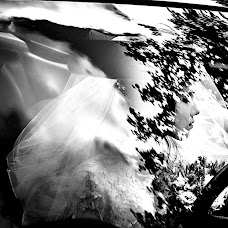 Wedding photographer Lena Astafeva (tigrdi). Photo of 29.07.2018