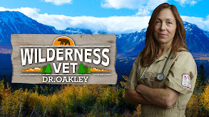 Wilderness Vet thumbnail