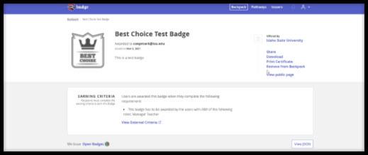 Screenshot of Badgr badge page