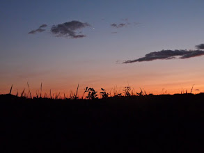 Photo: Venus in the afterglow
