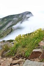 Photo: 鹿島槍ヶ岳を背景に。