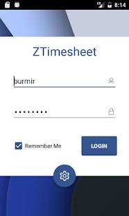 ZTimesheet Enterprise Edition - náhled