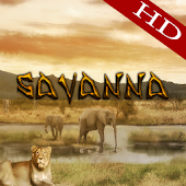 Savanna HD