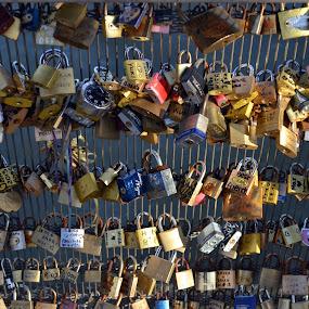 Locks on Seine River Bridge by Craig Payne - City,  Street & Park  Street Scenes ( love, paris, seine, locks, bridge )