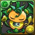 グリーンドラゴンフルーツ