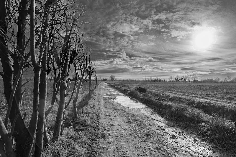 Pianura padana Invernale... di Cperso