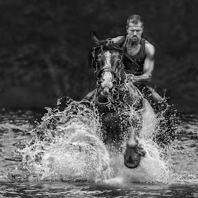 Power and Strength by KT Allen - People Street & Candids ( horse, travellers, appleby, gypsy, river )