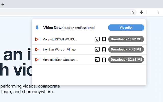 Video Downloader professional
