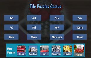 Tile Puzzles · Cactus