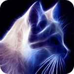 Sparkling cat Live Wallpaper
